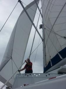 svi 2 tc frank sail